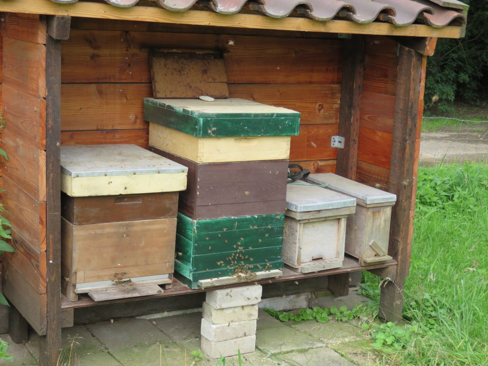 de bijenkasten
